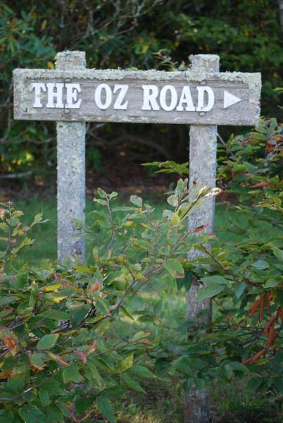 10-4-2008 Land of Oz 061
