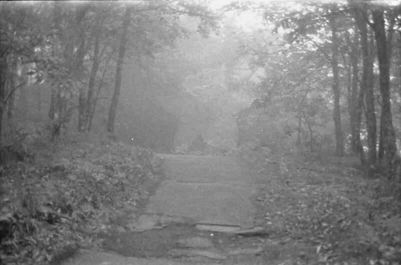 2 Foggy Path
