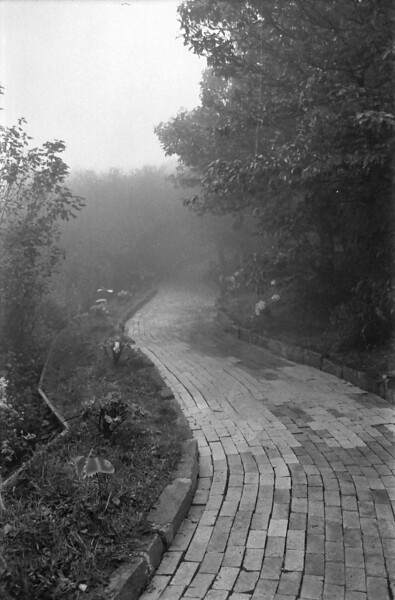 21 Foggy Yellow Brick Road