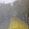 10-3-2010 Land of Oz 062