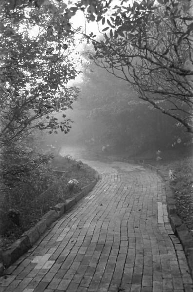 18 Foggy on the Yellow Brick Road