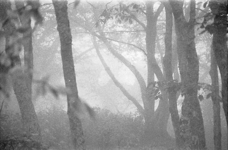 14 Fog obscures