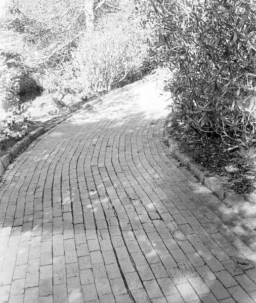 2 Yellow Brick Road 10-2-2010