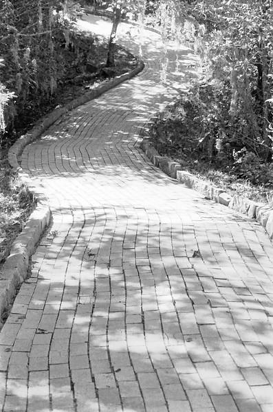 29 Yellow Brick Road