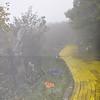 10-3-2010 Land of Oz 061