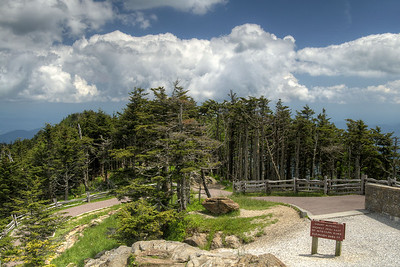 View of the landscape at the top of Mt. Mitchell in Mount Mitchell State Park at Milepost 355.4 on the Blue Ridge Parkway in NC on Saturday, June 15, 2013. Copyright 2013 Jason Barnette