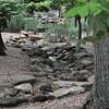 4-22-2012 Raffaldini Vineyards 115