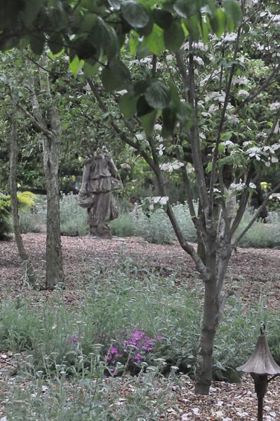 4-22-2012 Raffaldini Vineyards 112