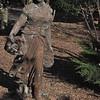 11-3-2012 Raffaldini Vineyard 101