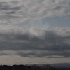 11-3-2012 Raffaldini Vineyard 155