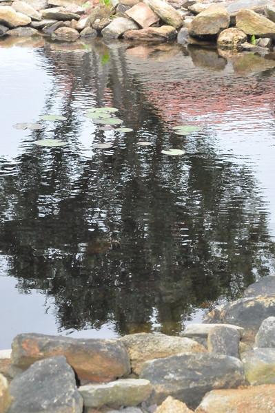 4-22-2012 Raffaldini Vineyards 095
