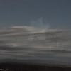 11-3-2012 Raffaldini Vineyard 146