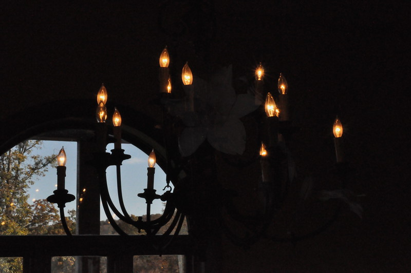 11-3-2012 Raffaldini Vineyard 001