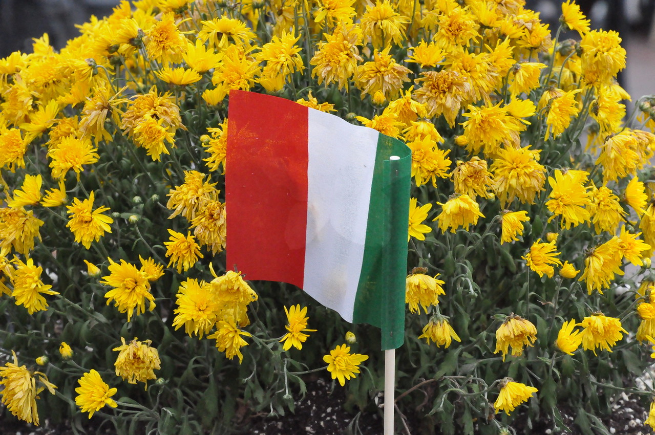 Festa Italiana at Raffaldini 9-17-2011 063