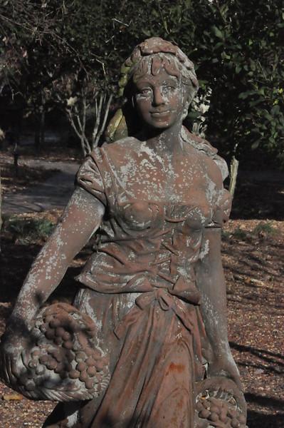 11-3-2012 Raffaldini Vineyard 100