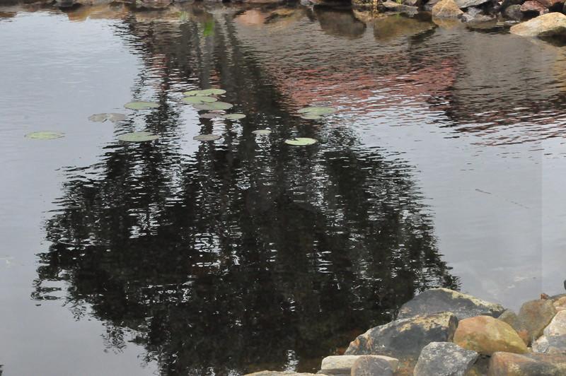 4-22-2012 Raffaldini Vineyards 096