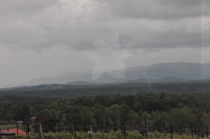 4-22-2012 Raffaldini Vineyards 153