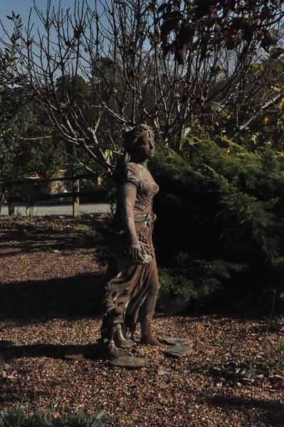 11-3-2012 Raffaldini Vineyard 076