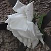 4-22-2012 Raffaldini Vineyards 070