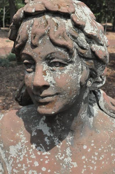8-13-2011 Raffaldini Vineyard 124
