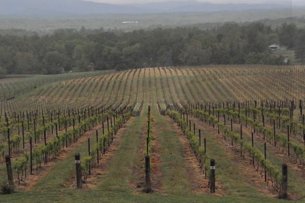 4-22-2012 Raffaldini Vineyards 001
