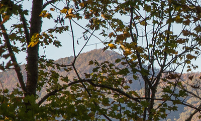 Shuckstack Mountain Fire Tower, as seen through the trees from the south shore of Fontana Lake.