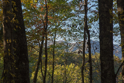 Shuckstack Mountain, as seen through the trees on the south shore of Fontana Lake.  The fire tower is barely visible at the top of the left summit.