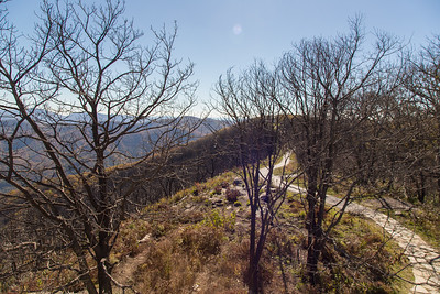 At the summit of Wayah Bald, a small stretch of the Appalachian Trail going past the observation tower is paved.