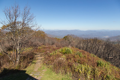 The Appalachian Trail heading north from the Wayah Bald summit.