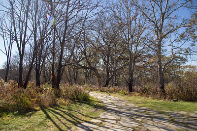 The paved path at the Wayah Bald summit.