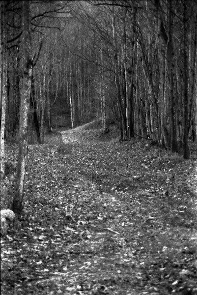 12-3-2009 Wilkesboro in Black and White