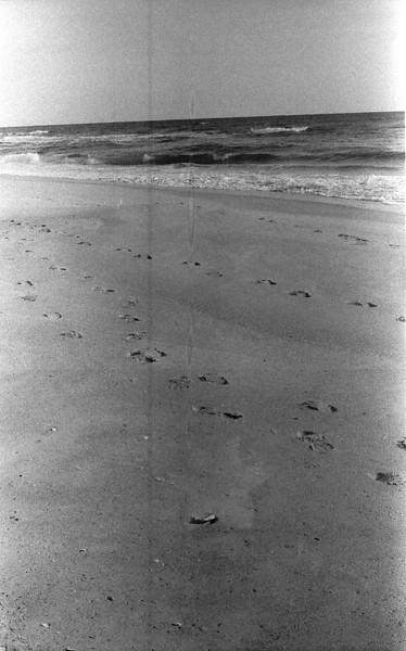 19 Carolina Beach Wilmington North Carolina