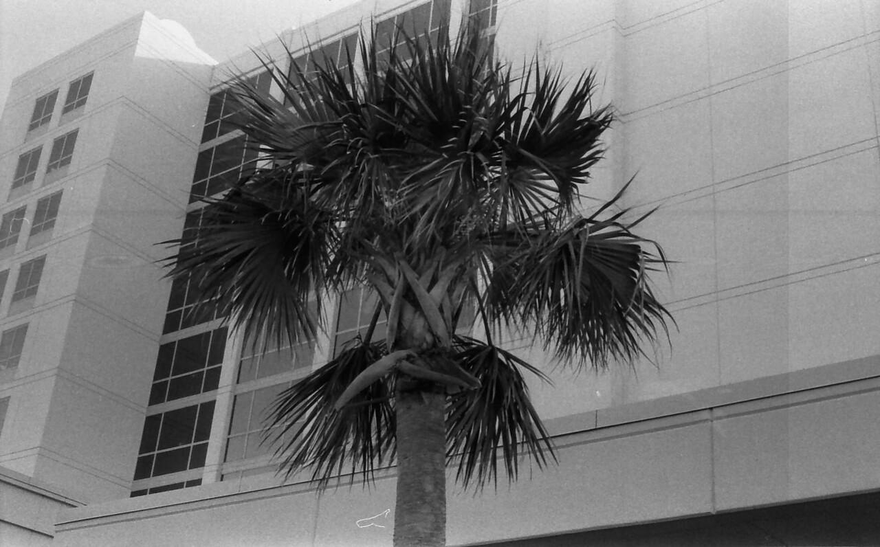 21 Carolina Beach Wilmington North Carolina