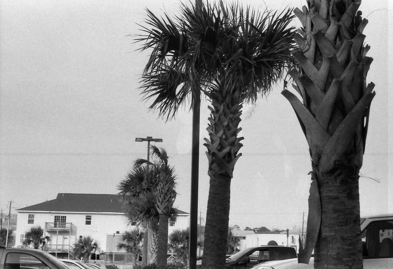 18 Carolina Beach Wilmington North Carolina