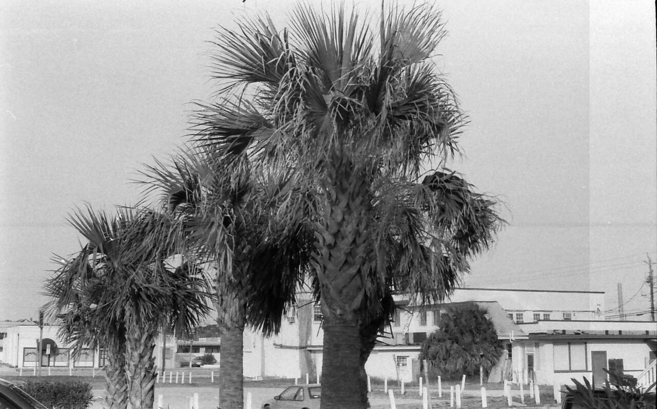 25 Carolina Beach Wilmington North Carolina