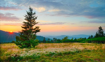 Sunset Roan Mountain
