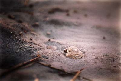 North Myrtle Beach 2014 (54)-Edit-Edit 300