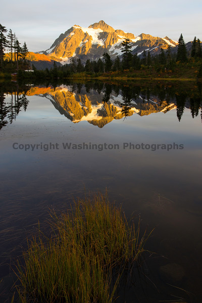 Mt Shuksan from Picture Lake 36