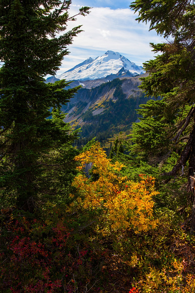Mt Baker Autumn 16
