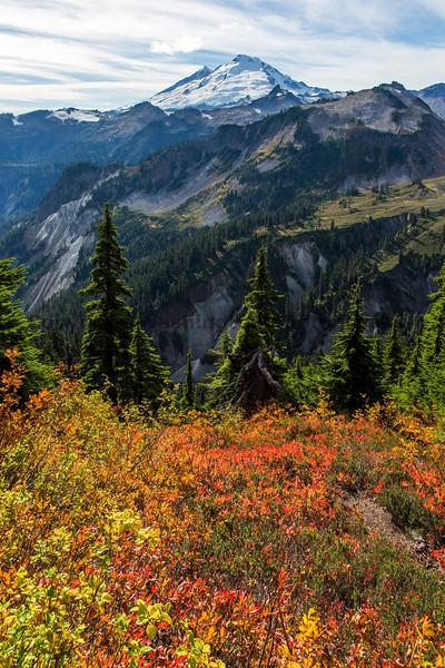 Mt Baker Autumn 24