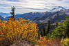 Mt Baker Autumn 12