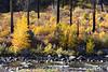 Tumwater Canyon 10