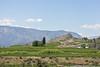 Lake Chelan Orchards 10