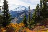 Mt Baker Autumn 21
