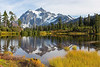 Mt Shuksan from Picture Lake 20