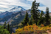 Mt Baker Autumn 14