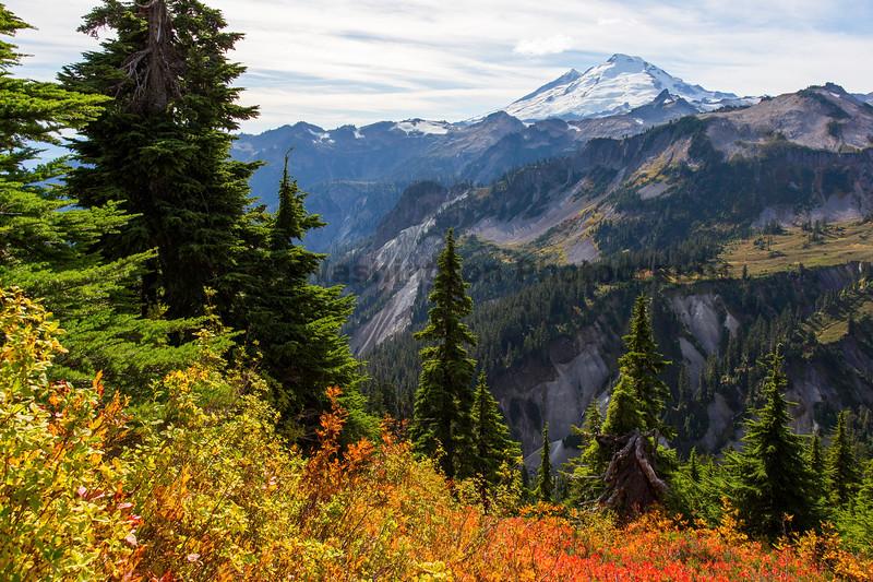 Mt Baker Autumn 22
