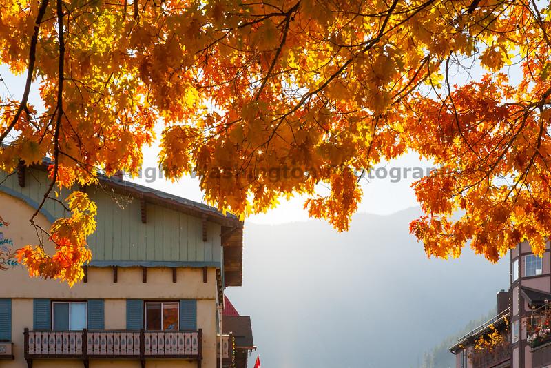 Leavenworth Autumn 14