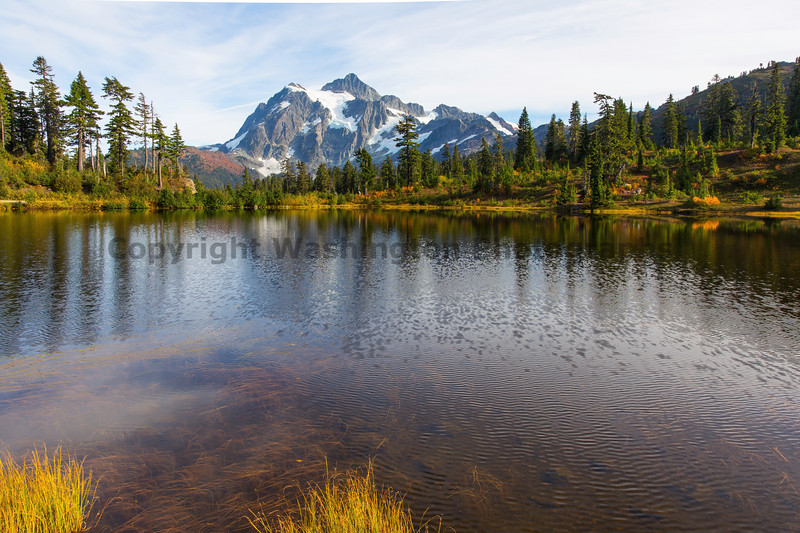 Mt Shuksan from Picture Lake 19