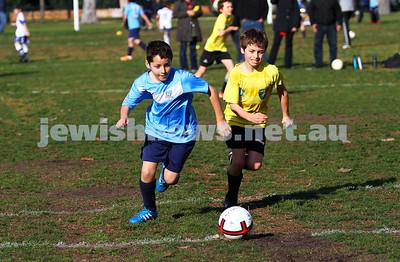 North Caulfield Maccabi U 11 Wallabies